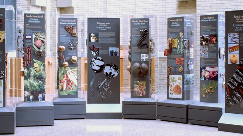 The ROM's Seeds in Disguise travelling exhibition