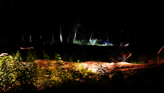 A forest scene at night lit only by headlamps from the ontario bioblitz teams as they survey in the dark
