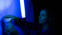 ROM scientist Antonia Guidotti lifts a jar up to a white sheet lit by a blacklight to collect insects attracted to the sheet during the 2012 Ontario Bioblitz