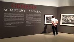 Image of gallery text for the GENESIS exhbition