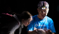 A young girl named Saskia peers closely at the bat being held in the hands of ROM mammalogist Burton Lim. The scene is illuminated by headlamp. Photo by Kendra Marjerrison
