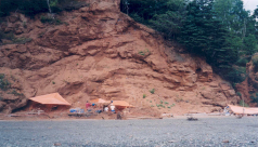These rock layers near Parrsboro, Nova Scotia, hold Canada's oldest dinosaurs. They are near the boundary of two chapters of geologic time – the Triassic and Jurassic Periods of the Mesozoic Era. (Photo by Victoria Arbour)