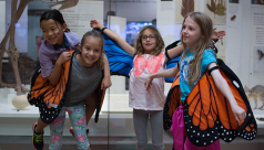 Four children stand with monarch wing costumes in front of an exhibit in the Schad Gallery at the ROM. Photo by Fatima Ali