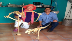 Helen Hatton with wooden dinosaurs in Mexico