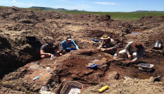 ROM Palaeo team working in the Triceratops quarry.