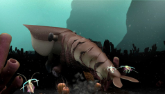 The Burgess Shale: The Virtual Museum of Canada