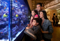 a family examines a large aquarium