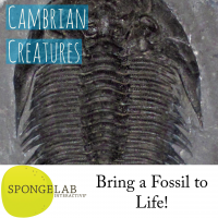 "a picture of a trilobite with the title ""Cambrian Creatures"""