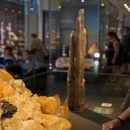 A visitor examines a mineral specimen