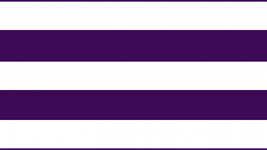 illustration of two purple lines running parallel across a white belt