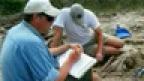 ROM Research: Dinosaurs in Alberta's Badlands
