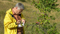 Tim Dickinson in the field, taking notes on a small hawthorn in British Columbia in August 2010.
